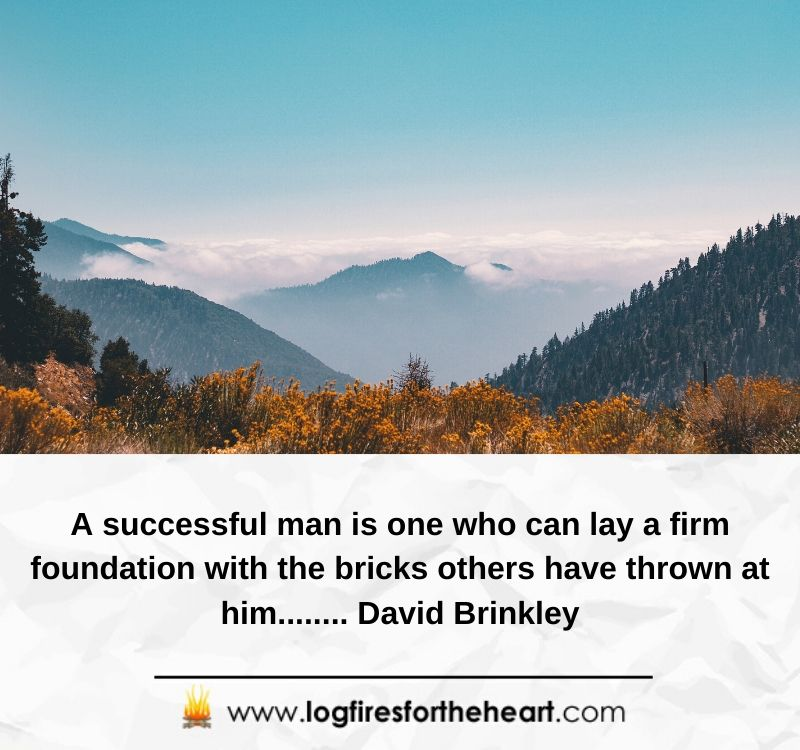 A successful man is one who can lay a firm foundation with the bricks others have thrown at him........ David Brinkley