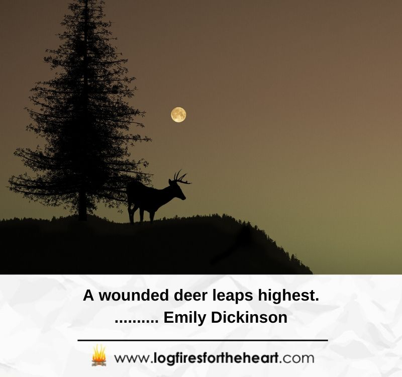 A wounded deer leaps highest........... Emily Dickinson