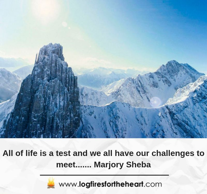 All of life is a test and we all have our challenges to meet....... Marjory Sheba