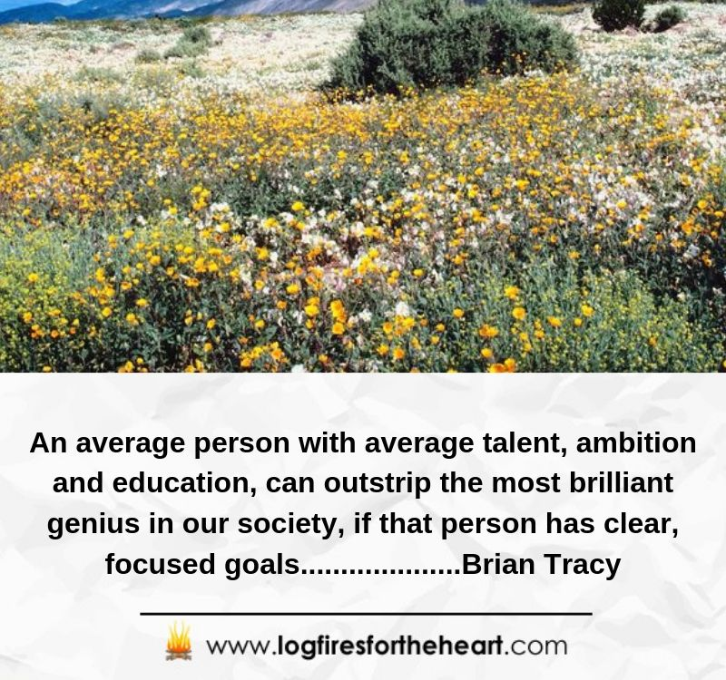 An average person with average talent, ambition and education, can outstrip the most brilliant genius in our society, if that person has clear, focused goals. ...................Brian Tracy