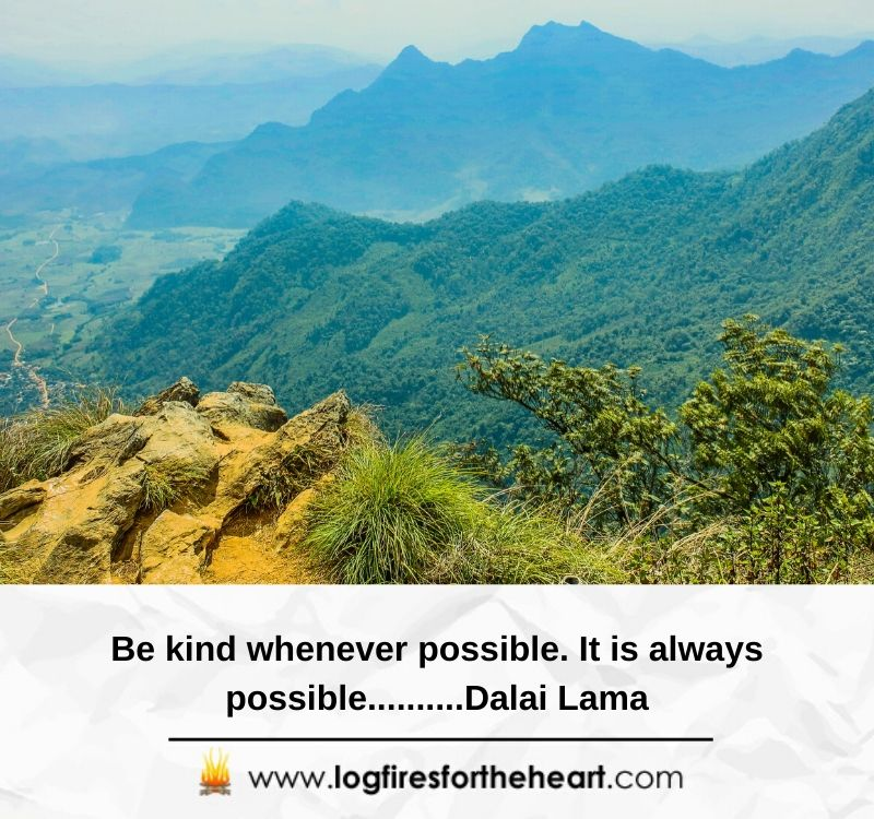 Be kind whenever possible. It is always possible..... Dalai Lama