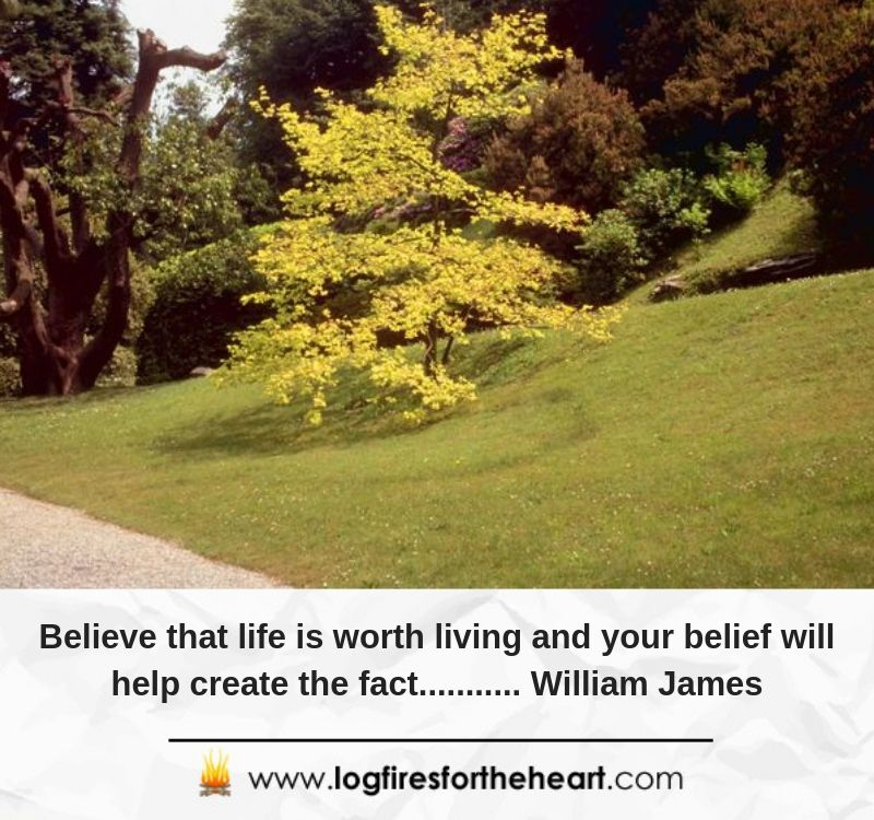 Believe that life is worth living and your belief will help create the fact........... William James