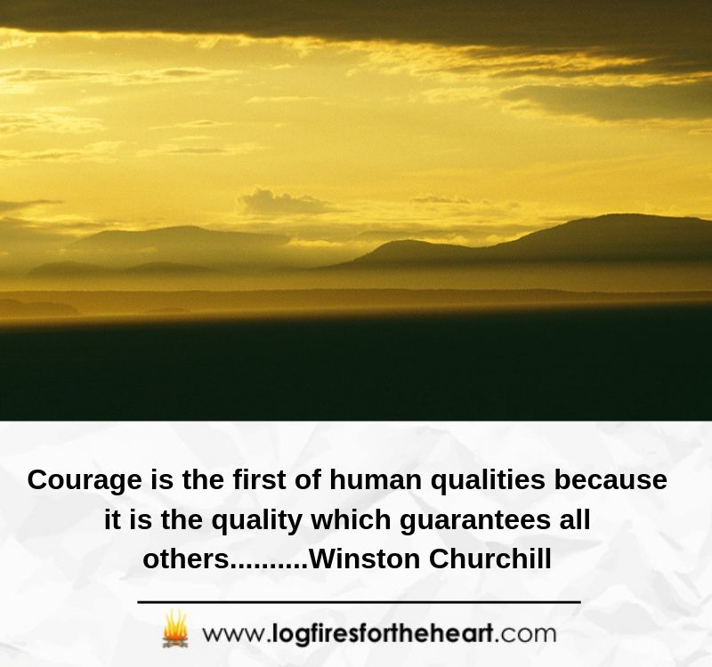 Courage is the first of human qualities because it is the quality which guarantees all others..........Winston Churchill