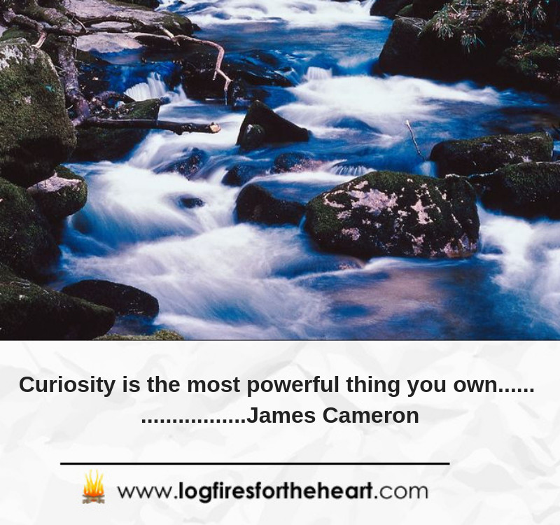 Curiosity is the most powerful thing you own...... James Cameron