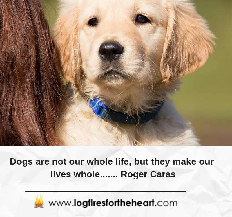 Dogs are not our whole life, but they make our lives whole....... Roger Caras