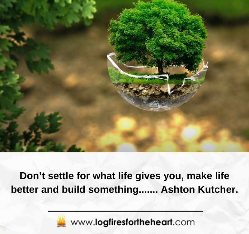 Don't settle for what life gives you; make life better and build something....... Ashton Kutcher.