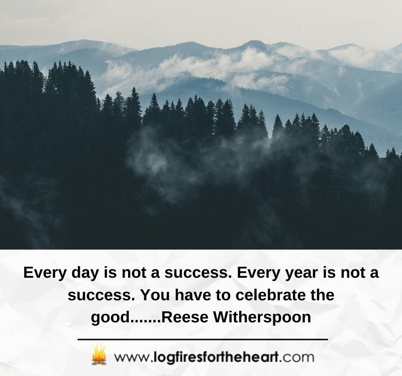 Every day is not a success. Every year is not a success. You have to celebrate the good.......Reese Witherspoon