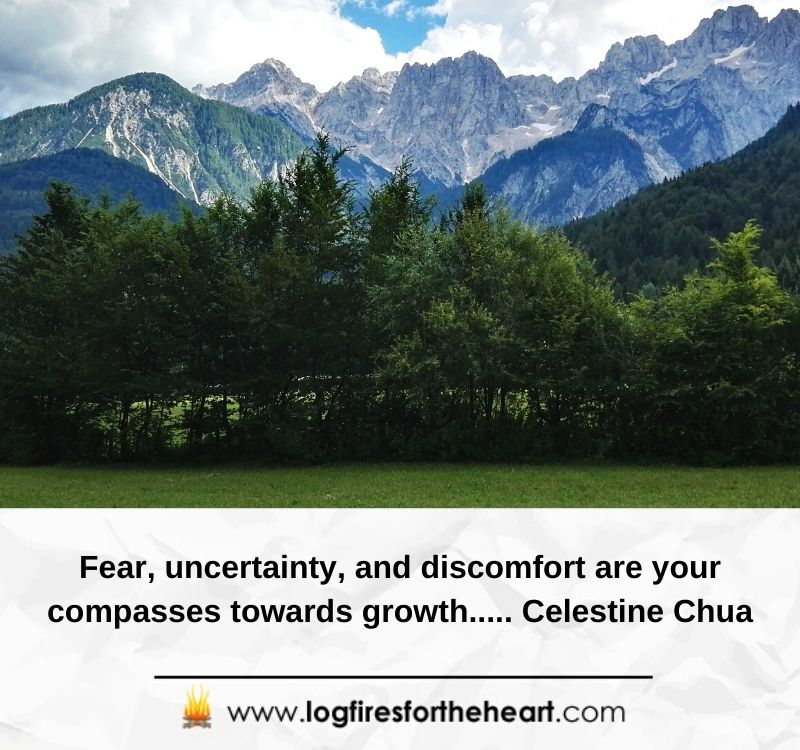 Fear, uncertainty, and discomfort are your compasses towards growth..... Celestine Chua