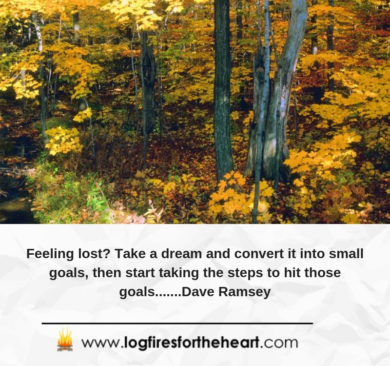 Feeling lost? Take a dream and convert it into small goals, then start taking the steps to hit those goals.......Dave Ramsey