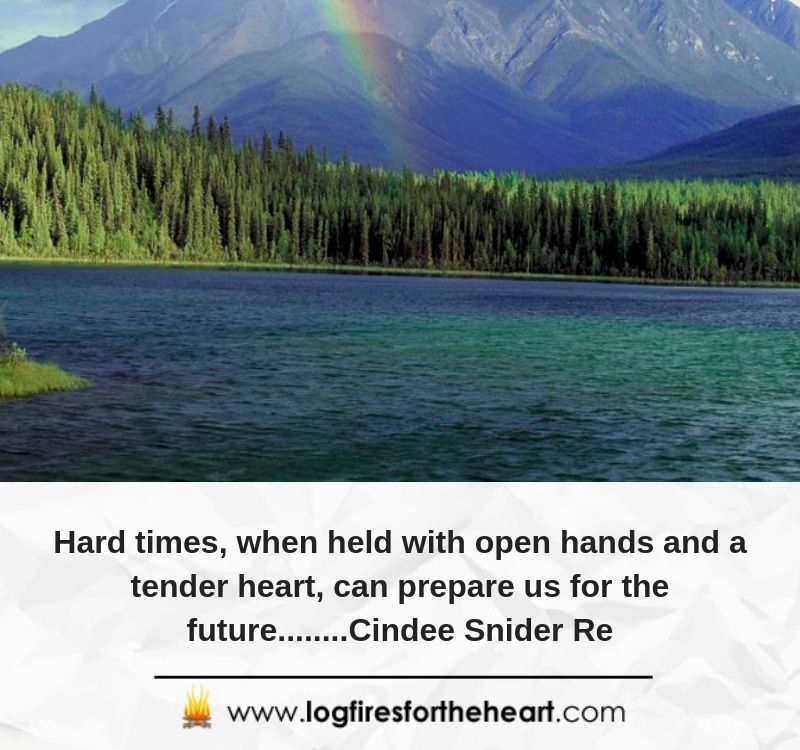 Hard times, when held with open hands and a tender heart, can prepare us for the future........Cindee Snider Re