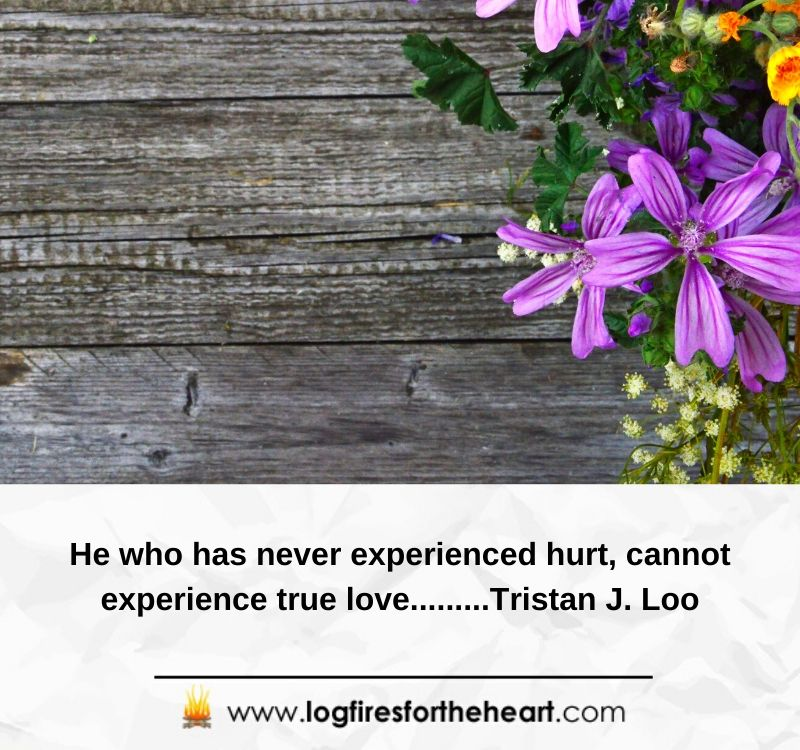 He who has never experienced hurt, cannot experience true love.........Tristan J. Loo