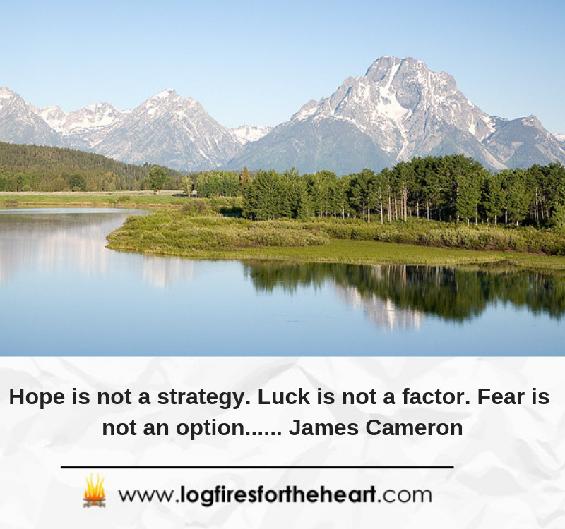 Hope is not a strategy. Luck is not a factor. Fear is not an option...... James Cameron