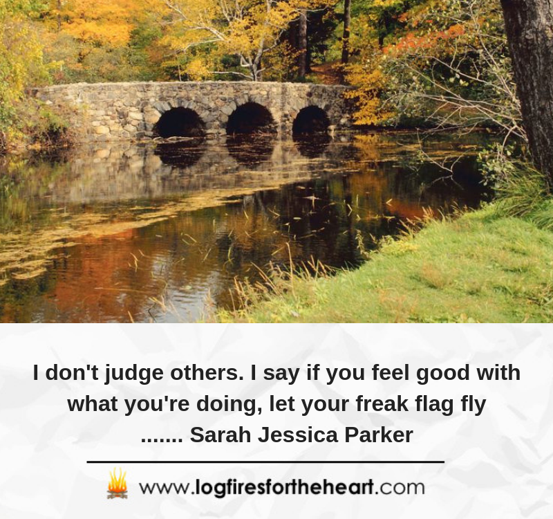 I don't judge others. I say if you feel good with what you're doing, let your freak flag fly....... Sarah Jessica Parker