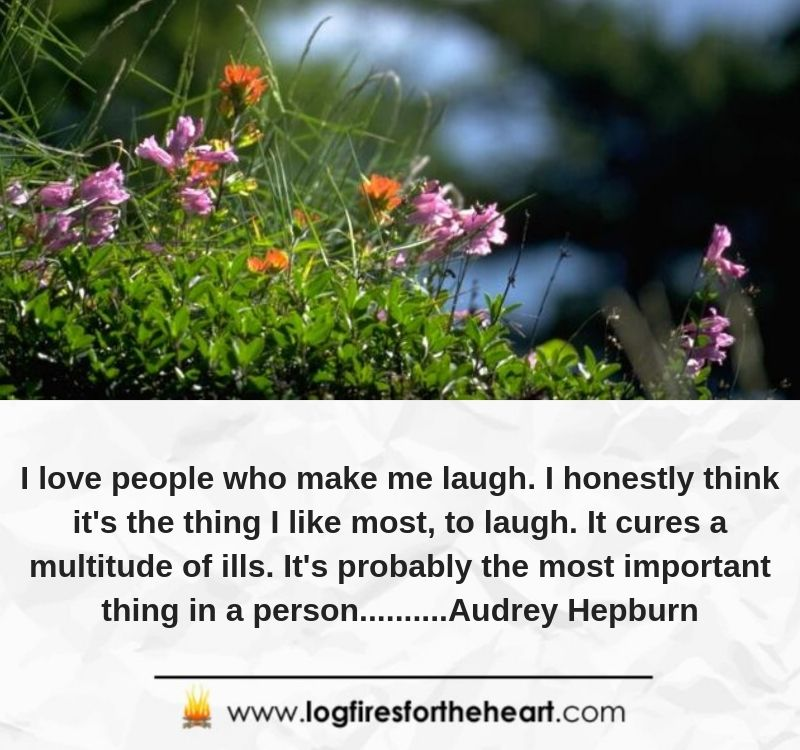 I love people who make me laugh. I honestly think it's the thing I like most, to laugh. It cures a multitude of ills. It's probably the most important thing in a person..........Audrey Hepburn