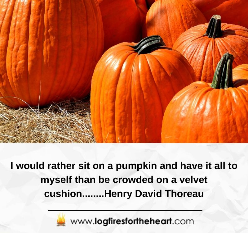 I would rather sit on a pumpkin and have it all to myself than be crowded on a velvet cushion........Henry David Thoreau