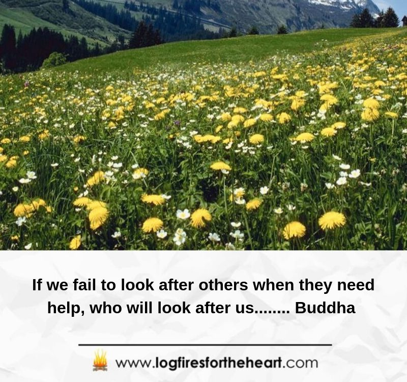 If we fail to look after others when they need help, who will look after us........ Buddha