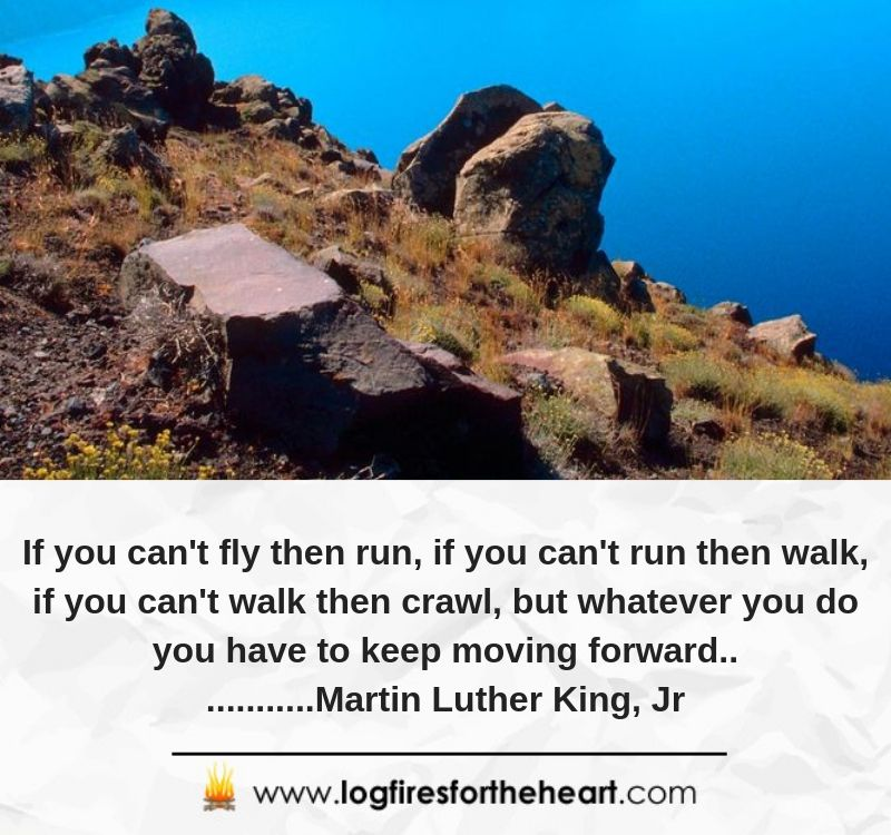 If you can't fly then run, if you can't run then walk, if you can't walk then crawl, but whatever you do you have to keep moving forward.............Martin Luther King, Jr.