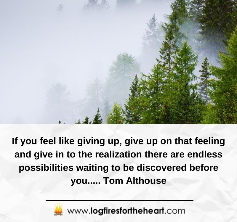 If you feel like giving up, give up on that feeling and give in to the realization there are endless possibilities waiting to be discovered before you..... Tom Althouse