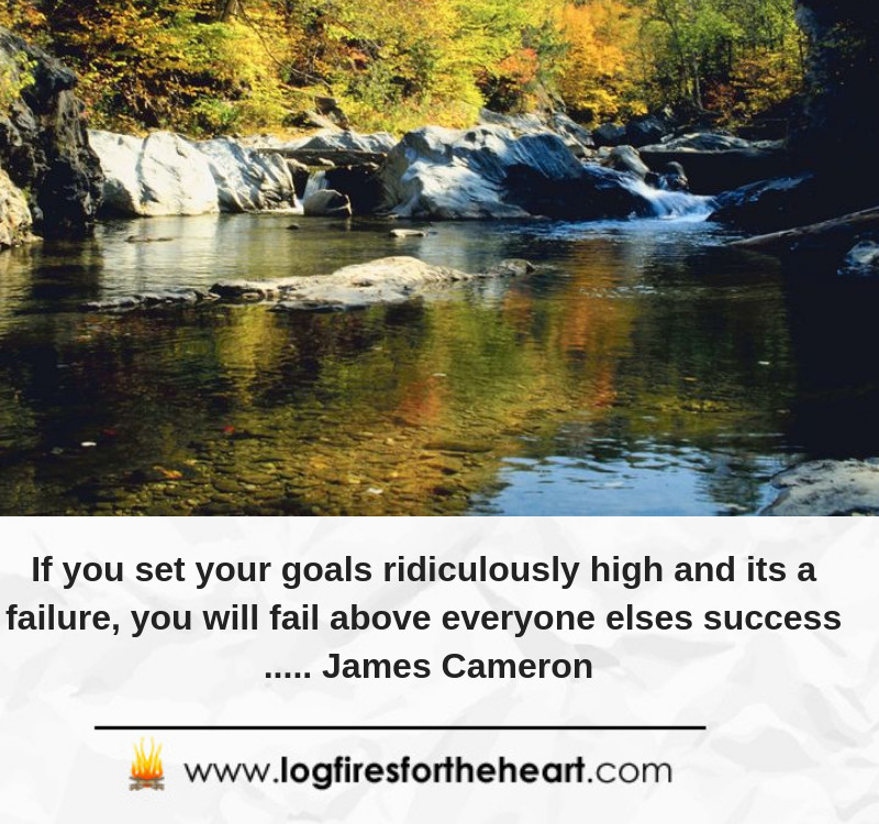 If you set your goals ridiculously high and its a failure, you will fail above everyone elses success ..... James Cameron