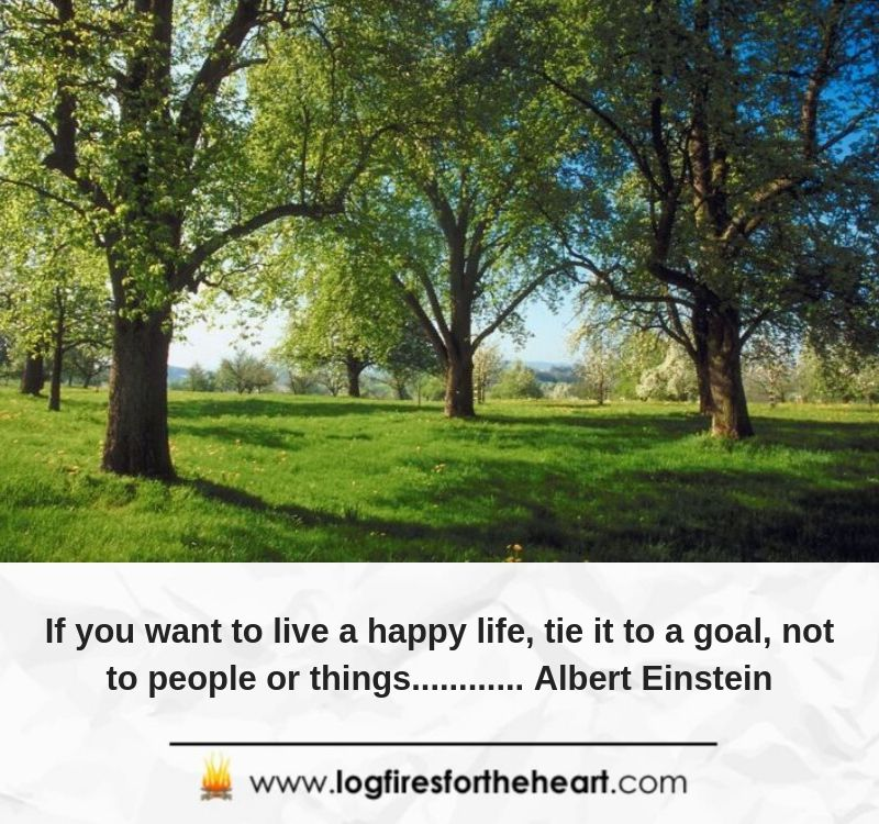 If you want to live a happy life, tie it to a goal, not to people or things............ Albert Einstein