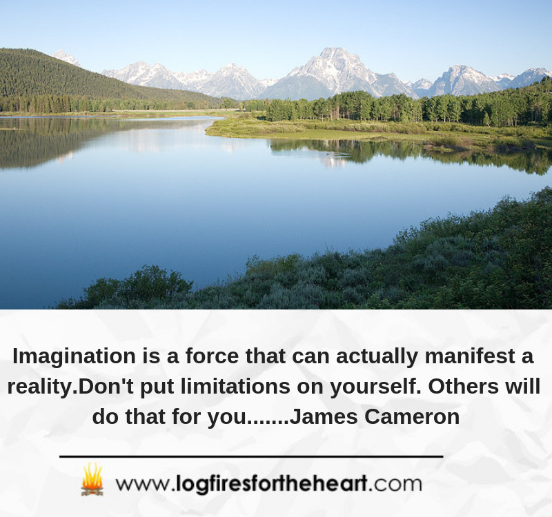 Imagination is a force that can actually manifest a reality. Don't put limitations on yourself. Others will do that for you.......James Cameron