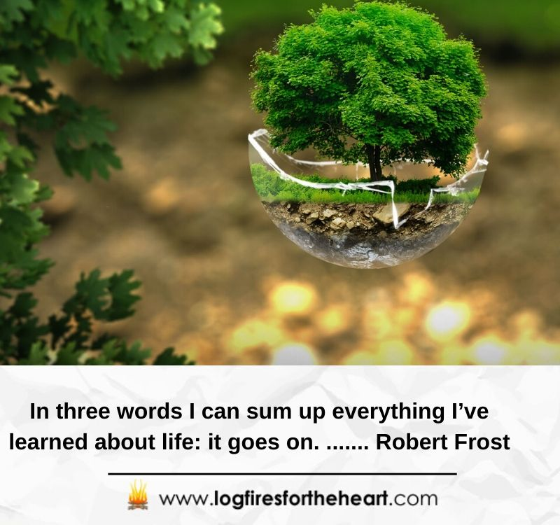 In three words I can sum up everything I've learned about life: it goes on........ Robert Frost