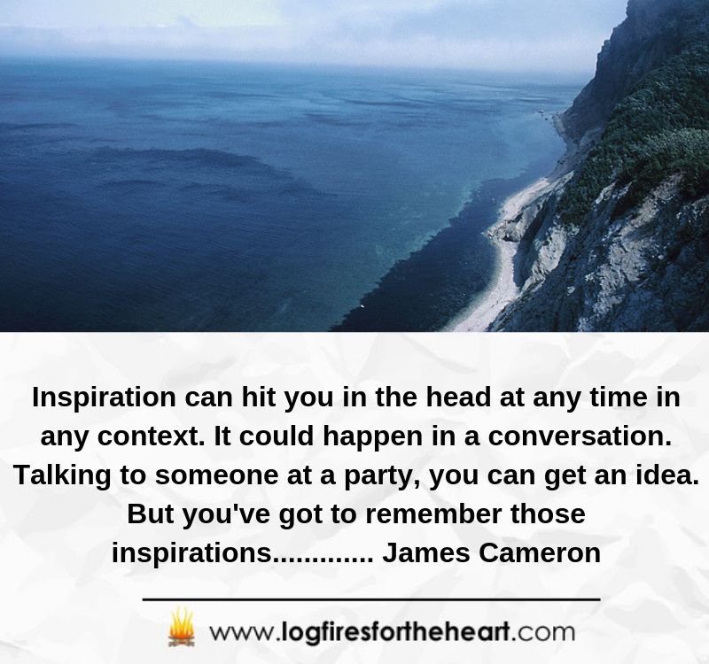 Inspiration can hit you in the head at any time in any context. It could happen in a conversation. Talking to someone at a party, you can get an idea. But you've got to remember those inspirations............. James Cameron