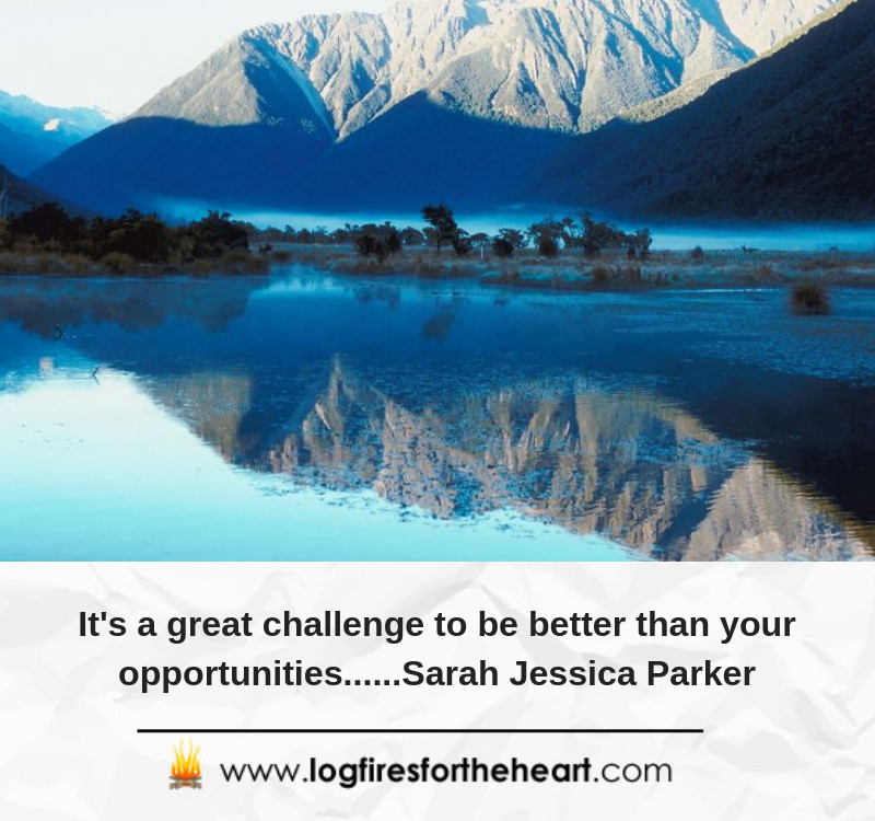 It's a great challenge to be better than your opportunities......Sarah Jessica Parker