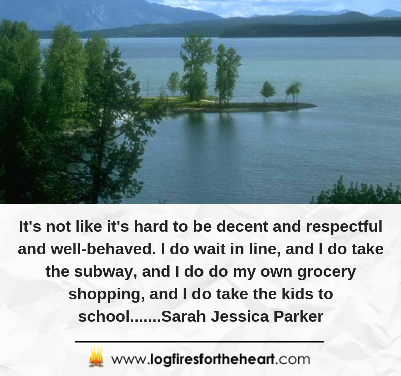 It's not like it's hard to be decent and respectful and well-behaved. I do wait in line, and I do take the subway, and I do do my own grocery shopping, and I do take the kids to school.......Sarah Jessica Parker
