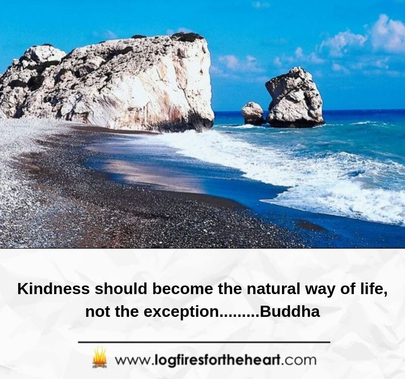 Kindness should become the natural way of life, not the exception.........Buddha