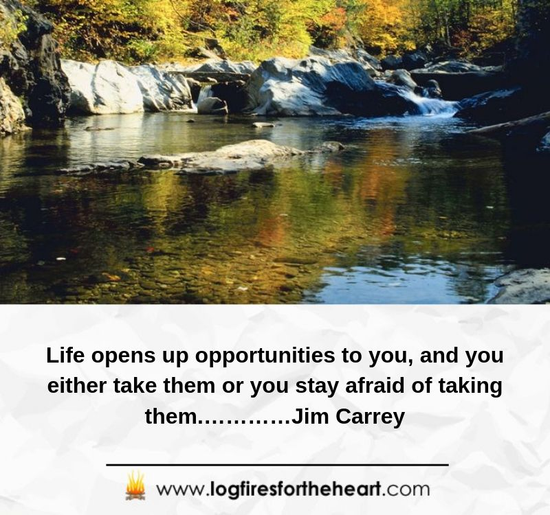 Life opens up opportunities to you, and you either take them or you stay afraid of taking them.………Jim Carrey