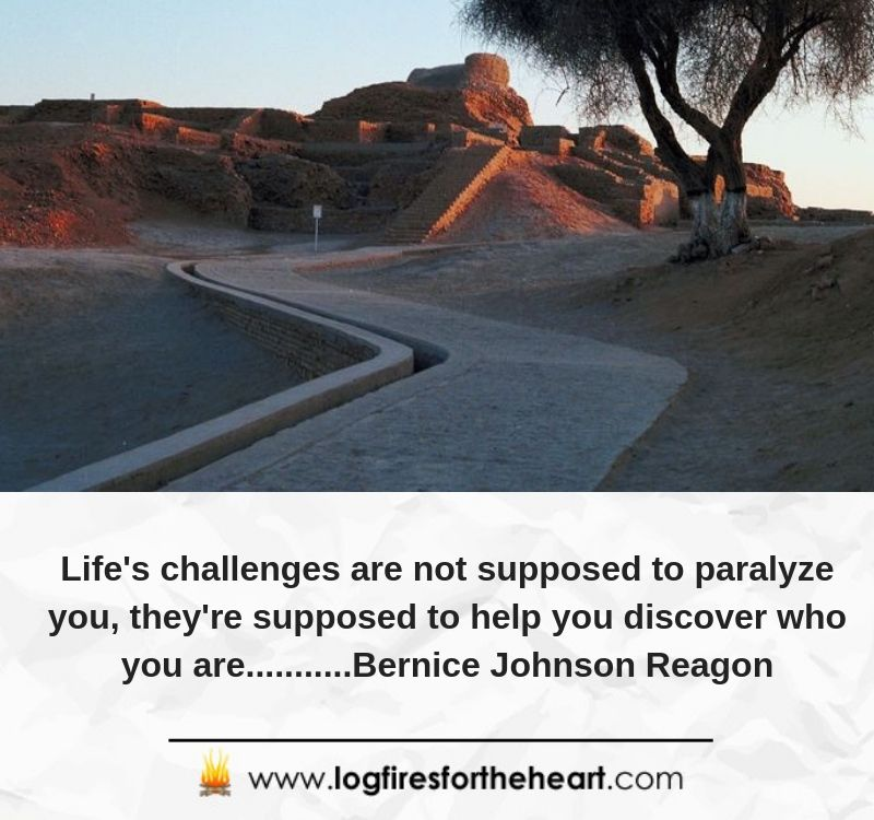 Life's challenges are not supposed to paralyze you; they're supposed to help you discover who you are...........Bernice Johnson Reagon