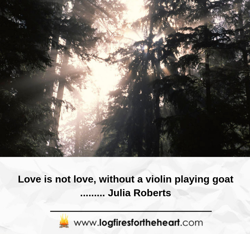 Love is not love, without a violin playing goat......... Julia Roberts