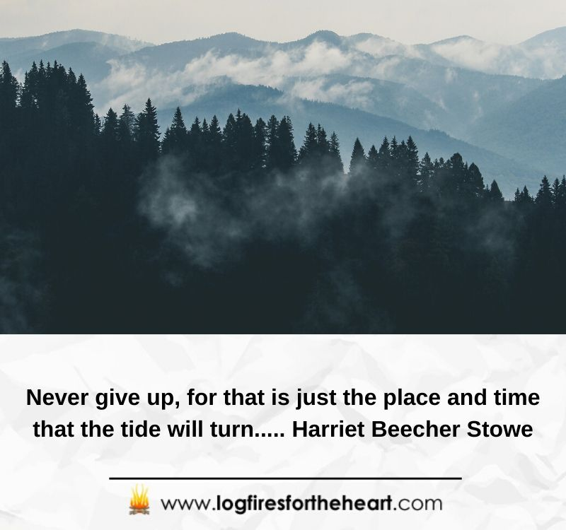 Never give up, for that is just the place and time that the tide will turn..... Harriet Beecher Stowe