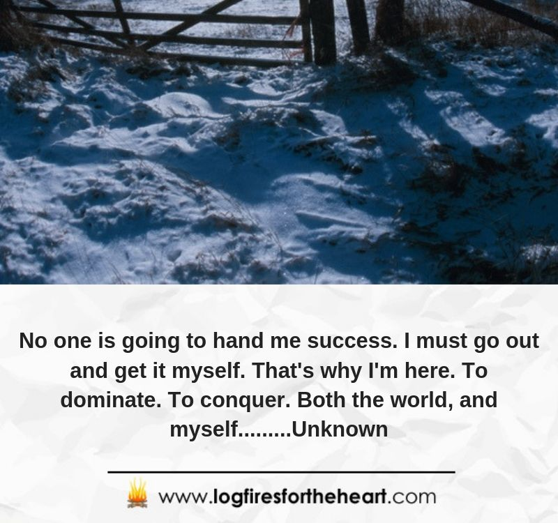 No one is going to hand me success. I must go out and get it myself. That's why I'm here. To dominate. To conquer. Both the world, and myself.........Unknown