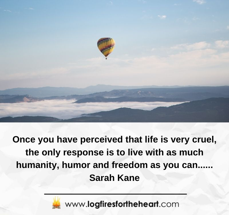 Once you have perceived that life is very cruel, the only response is to live with as much humanity, humor and freedom as you can...... Sarah Kane