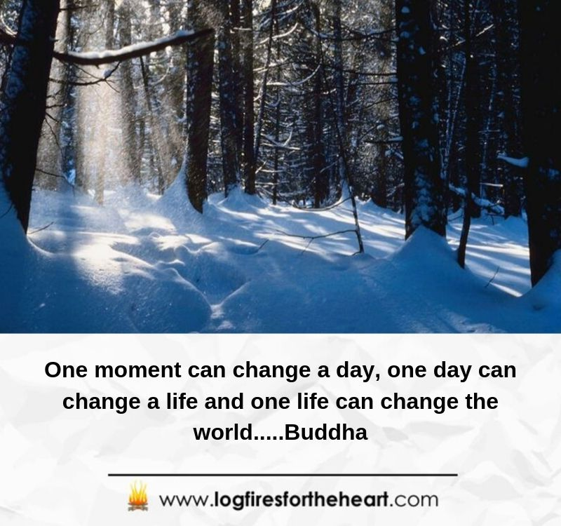One moment can change a day, one day can change a life and one life can change the world.....Buddha