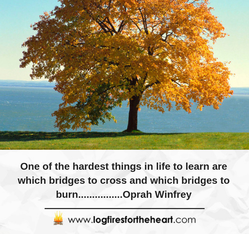 One of the hardest things in life to learn are which bridges to cross and which bridges to burn................Oprah Winfrey