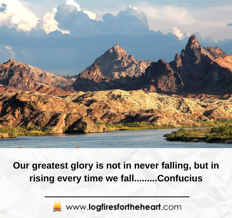 Our greatest glory is not in never falling, but in rising every time we fall.........Confucius