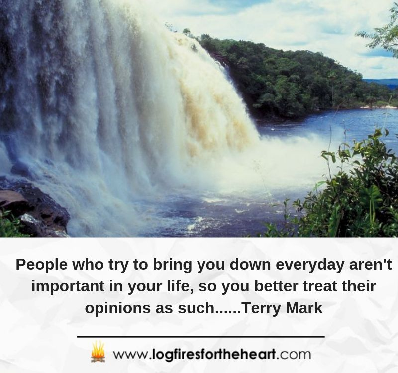 People who try to bring you down everyday aren't important in your life, so you better treat their opinions as such......Terry Mark