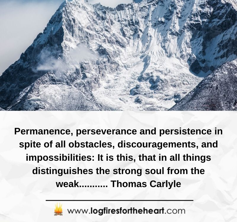 Permanence, perseverance and persistence in spite of all obstacles, discouragements, and impossibilities: It is this, that in all things distinguishes the strong soul from the weak........... Thomas Carlyle