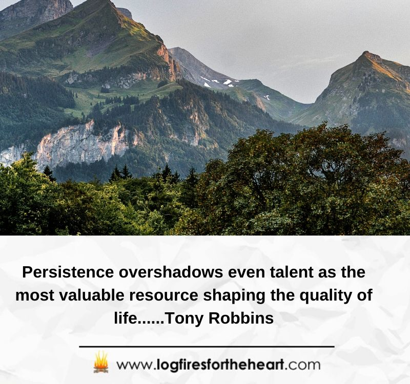 Persistence overshadows even talent as the most valuable resource shaping the quality of life......Tony Robbins