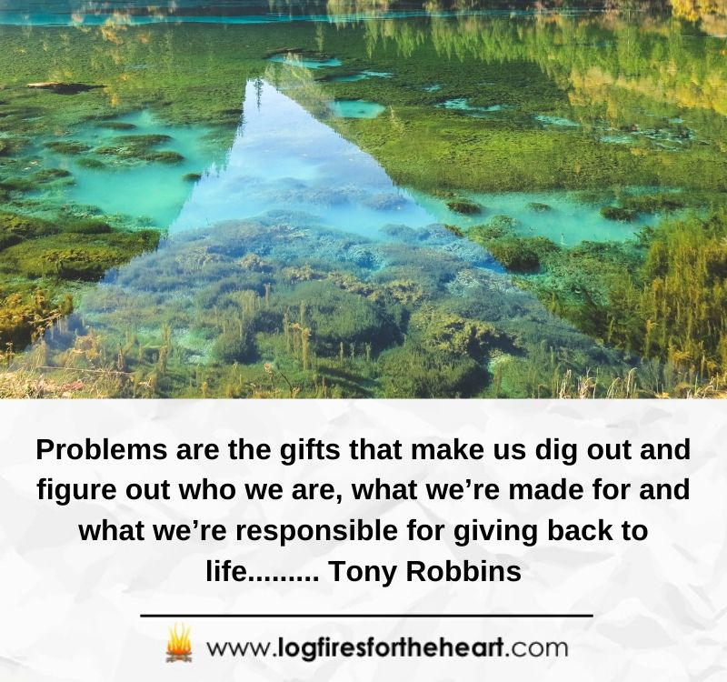 Problems are the gifts that make us dig out and figure out who we are, what we're made for and what we're responsible for giving back to life......... Tony Robbins