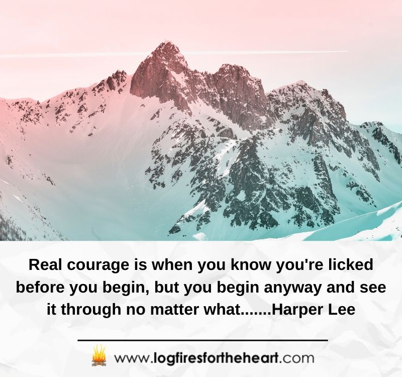 Real courage is when you know you're licked before you begin, but you begin anyway and see it through no matter what.......Harper Lee