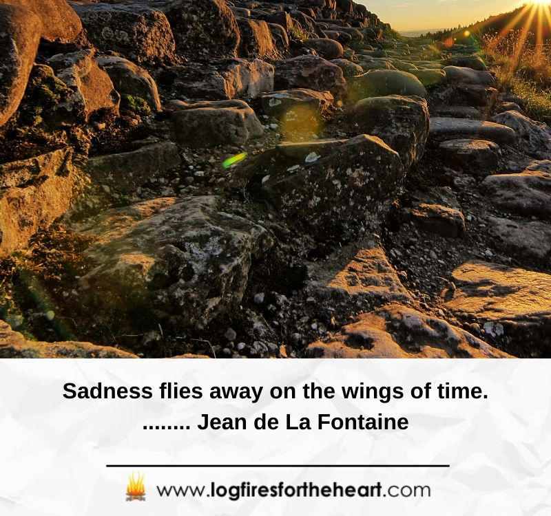 Sadness flies away on the wings of time. – Jean de La Fontaine