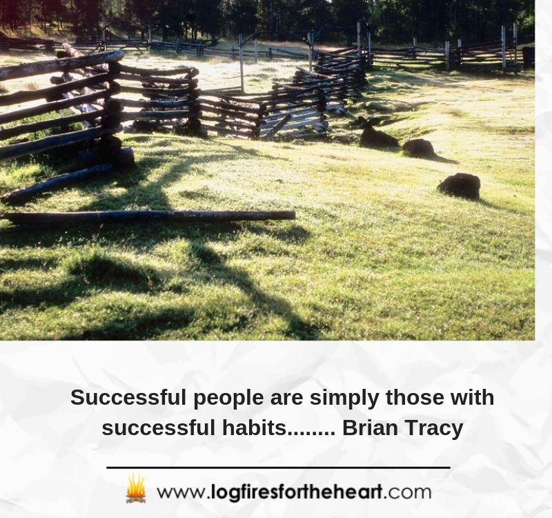 Successful people are simply those with successful habits........ Brian Tracy