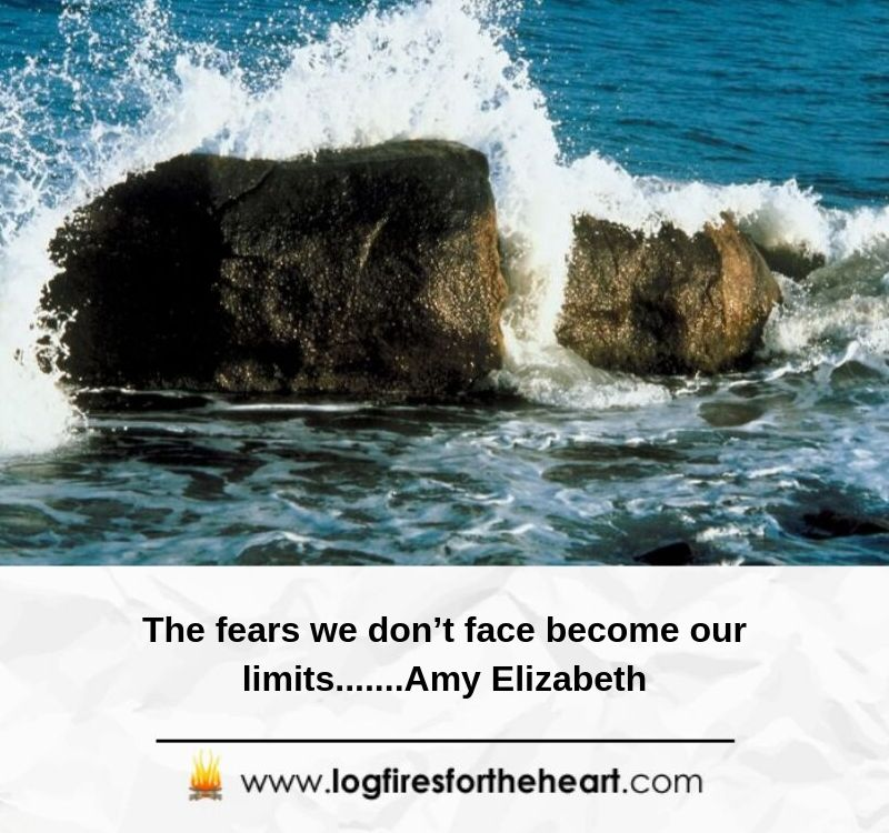 The fears we don't face become our limits.......Amy Elizabeth