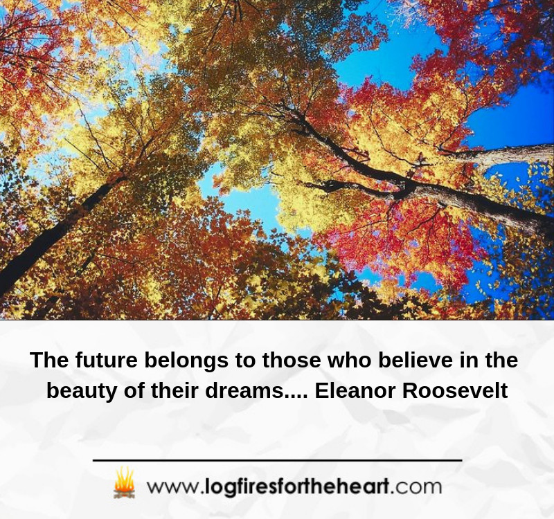 The future belongs to those who believe in the beauty of their dreams.... Eleanor Roosevelt