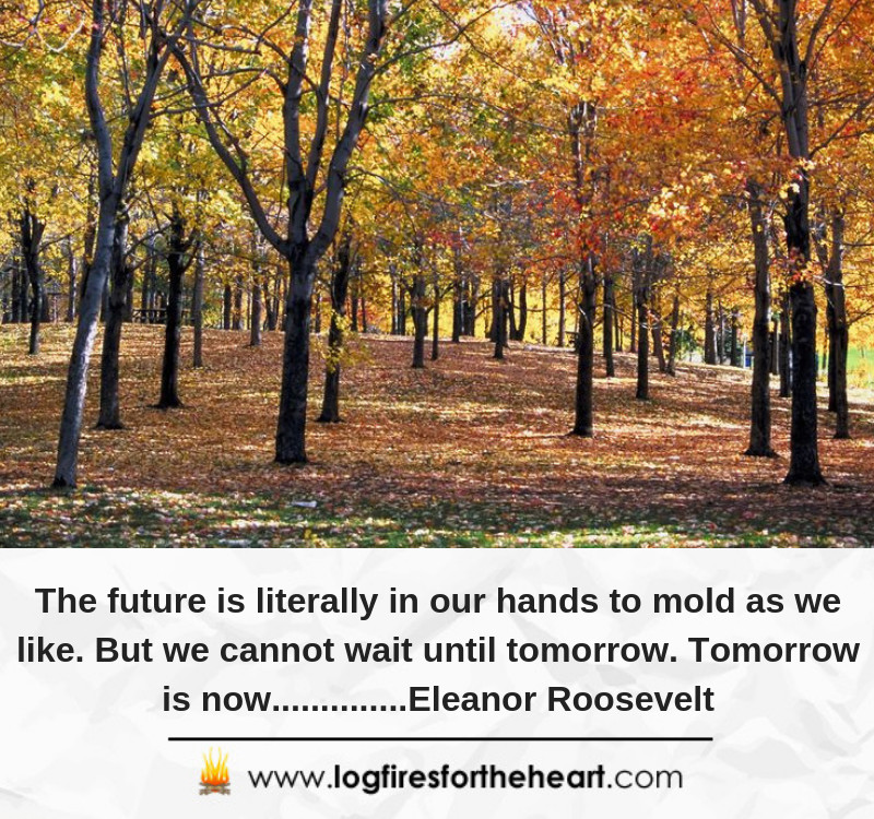 The future is literally in our hands to mold as we like. But we cannot wait until tomorrow. Tomorrow is now..............Eleanor Roosevelt