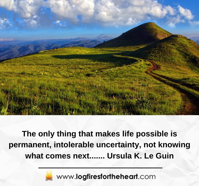 The only thing that makes life possible is permanent, intolerable uncertainty, not knowing what comes next....... Ursula K. Le Guin